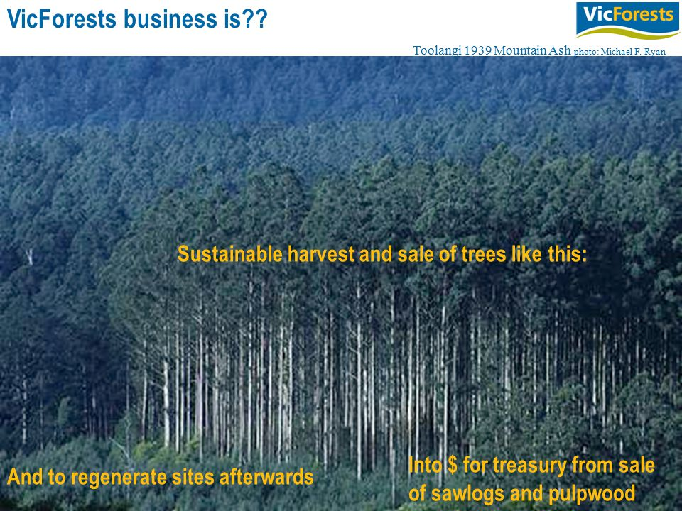 3 Sustainable harvest and sale of trees like this: And to regenerate sites afterwards VicForests business is?.