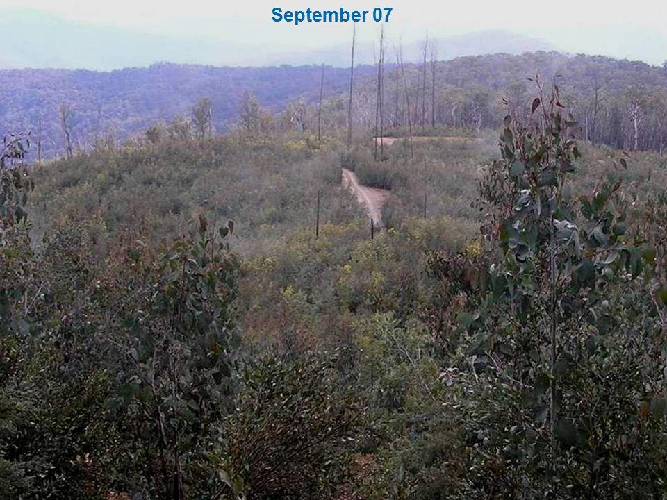 September 07
