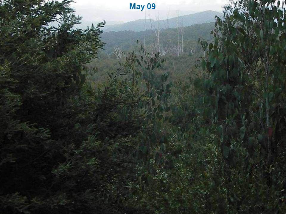 May 09