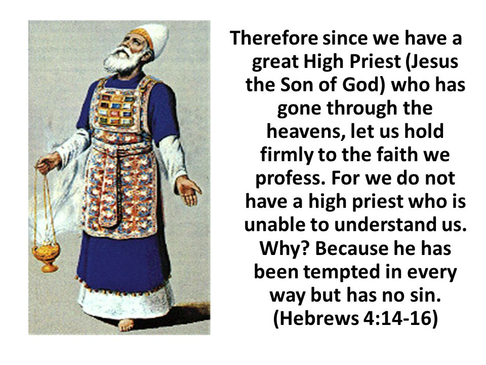 Therefore since we have a great High Priest (Jesus the Son of God) who has gone through the heavens, let us hold firmly to the faith we profess. For w