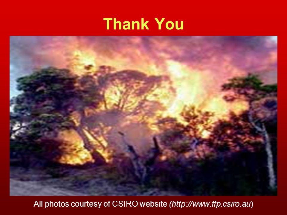 Thank You All photos courtesy of CSIRO website (http://www.ffp.csiro.au)