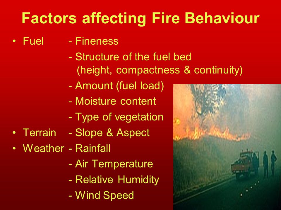 Factors affecting Fire Behaviour Fuel- Fineness - Structure of the fuel bed (height, compactness & continuity) - Amount (fuel load) - Moisture content - Type of vegetation Terrain- Slope & Aspect Weather- Rainfall - Air Temperature - Relative Humidity - Wind Speed