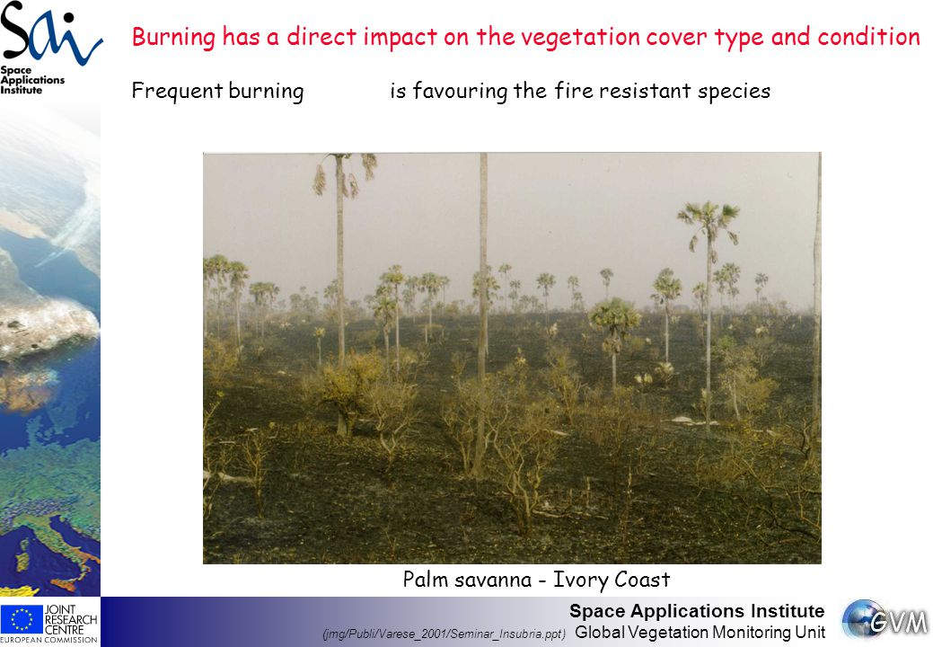 Space Applications Institute (jmg/Publi/Varese_2001/Seminar_Insubria.ppt) Global Vegetation Monitoring Unit GBA 2000: a network approach CSIRO(AU) - UTL(P) - NRI(UK) - CNR(I) - CCRS (CA) - CRG (CA) - IFI (RU) - SAI (EU) GBA test-sites (white rectangles; indicative position), with corresponding geographical coordinates (Ul; LR corners) 63N - 81W 44N - 55W (CRG) 62.5N-112W 57N-104.5W (CCRS) 18N - 93W 7N - 77W (NRI) 5S - 75W 20S - 45W (UTL) 17S - 21E 28S - 29E (NRI) 10S - 22E 28S - 42E (UTL) 18N - 18W 0 - 52E (CNR) 44N - 10W 36N - 0 (UTL) 11S - 125E 21S - 135E (CSIRO) 60N - 118E 48N - 140E (IFI) 68N - 45E 60N - 60E (IFI) 55N - 115E 40N - 135E (UTL) 10S - 125E 18S - 146E (GVM)