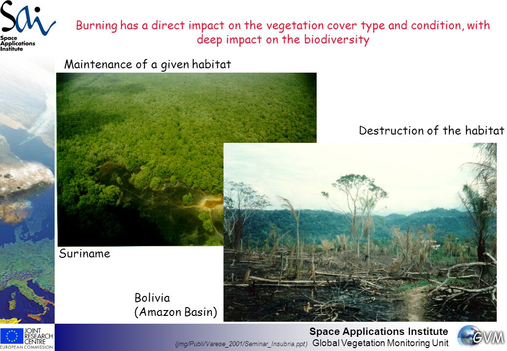 Space Applications Institute (jmg/Publi/Varese_2001/Seminar_Insubria.ppt) Global Vegetation Monitoring Unit Vegetation fires have a direct impact on the chemistry of the lower troposphere Importance of biomass burning as anthropogenic emissions source of greenhouse gases and aerosols (Kyoto Protocol) SpeciesAll human sourcesBiomass burningGlobal savannas fires (Tg/yr)(Tg/yr) % (Tg/yr) % ------------------------------------------------------------------------------------------------------------------- CO 2 33700 a 1350040607018 CO1600 a 68043 24015 CH 4 275 a 4316 93 Aerosols390 e 9023 379 Black carbon 90 e 606733 ------------------------------------------------------------------------------------------------------------------- a: Houghton et al., 1995 e: Scholes & Andreae, 2000