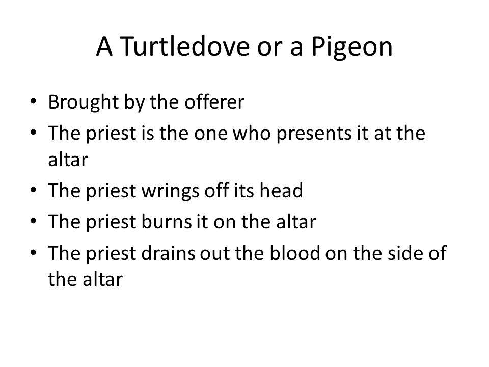 A Turtledove or a Pigeon Brought by the offerer The priest is the one who presents it at the altar The priest wrings off its head The priest burns it