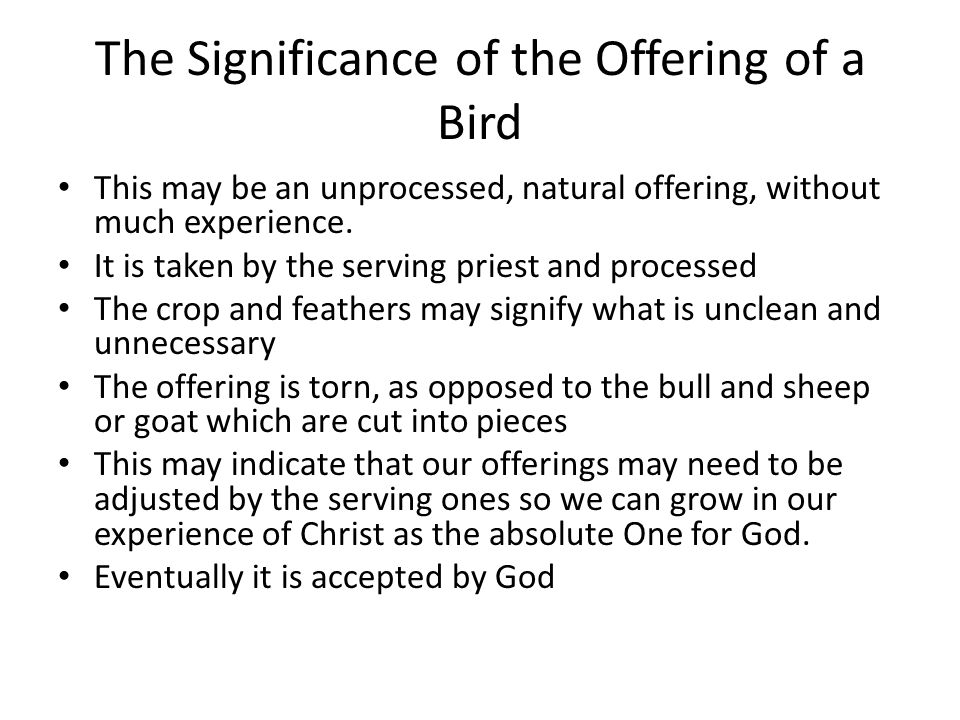 The Significance of the Offering of a Bird This may be an unprocessed, natural offering, without much experience. It is taken by the serving priest an