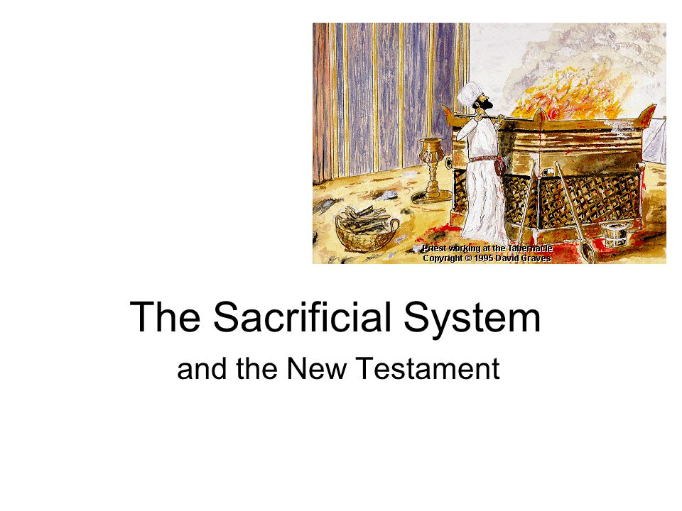 The Sacrificial System and the New Testament