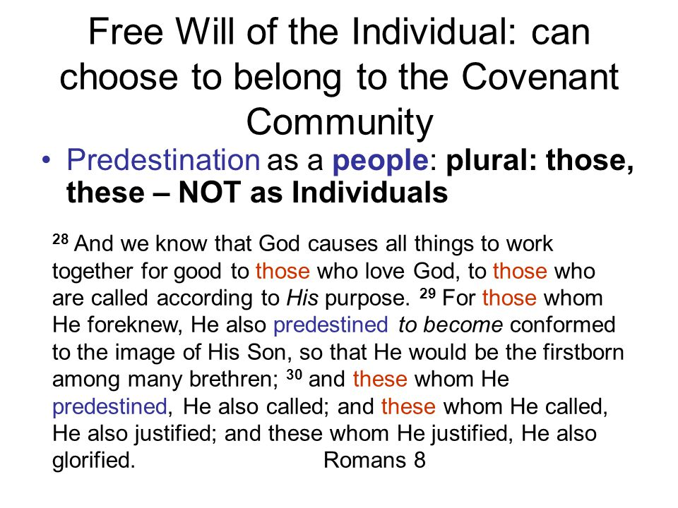Free Will of the Individual: can choose to belong to the Covenant Community Predestination as a people: plural: those, these – NOT as Individuals 28 And we know that God causes all things to work together for good to those who love God, to those who are called according to His purpose.