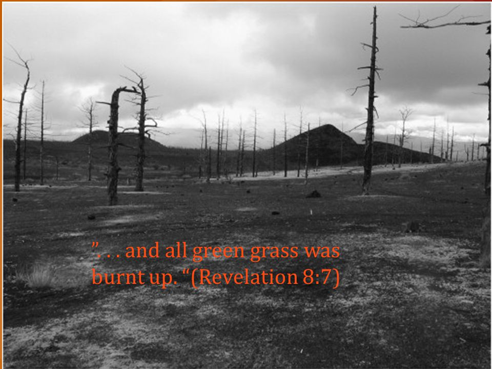 """""""... and all green grass was burnt up. """"(Revelation 8:7)"""
