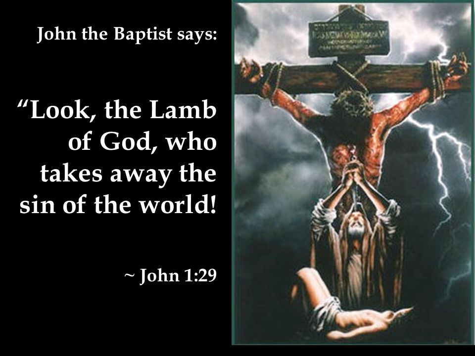 John the Baptist says: Look, the Lamb of God, who takes away the sin of the world! ~ John 1:29