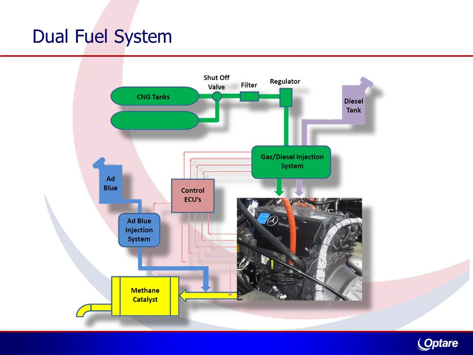 Dual Fuel System