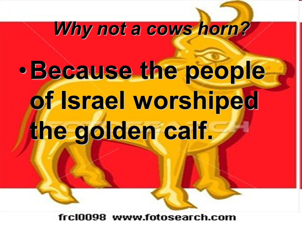 Why not a cows horn? Because the people of Israel worshiped the golden calf.Because the people of Israel worshiped the golden calf.