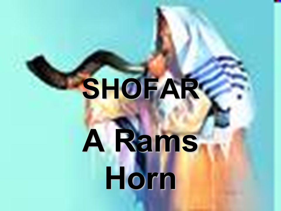 SHOFAR A Rams Horn