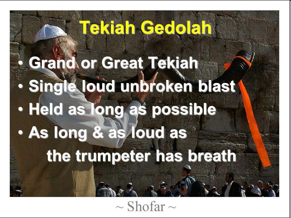 Tekiah Gedolah Grand or Great TekiahGrand or Great Tekiah Single loud unbroken blastSingle loud unbroken blast Held as long as possibleHeld as long as