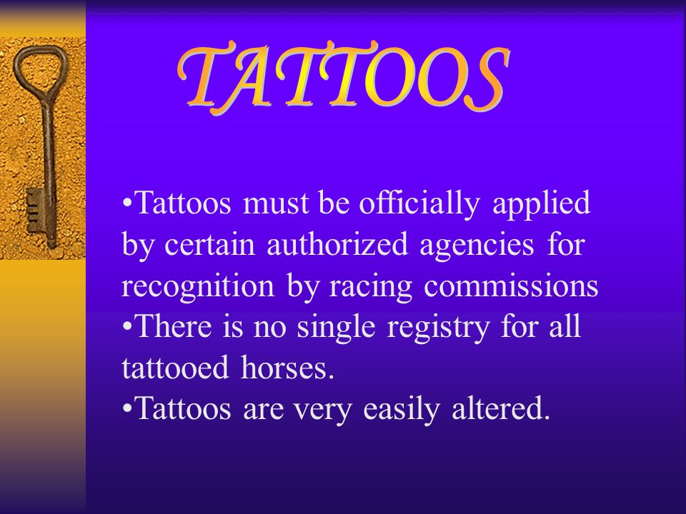 Tattoos must be officially applied by certain authorized agencies for recognition by racing commissions There is no single registry for all tattooed h