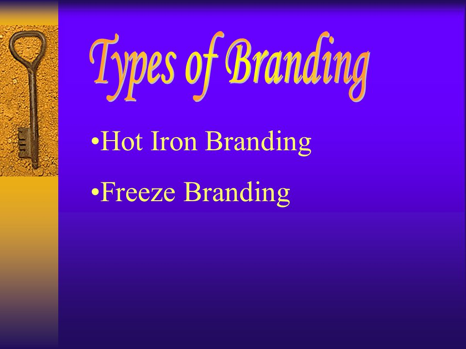 Hot Iron Branding Freeze Branding