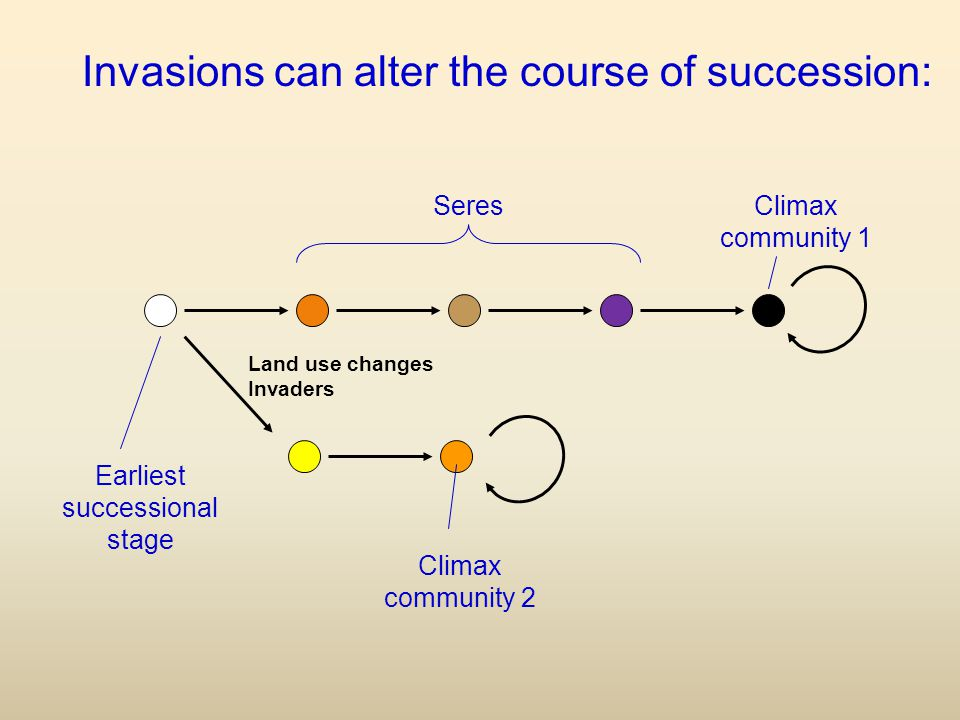 Earliest successional stage Climax community 1 Seres Invasions can alter the course of succession: Climax community 2 Land use changes Invaders