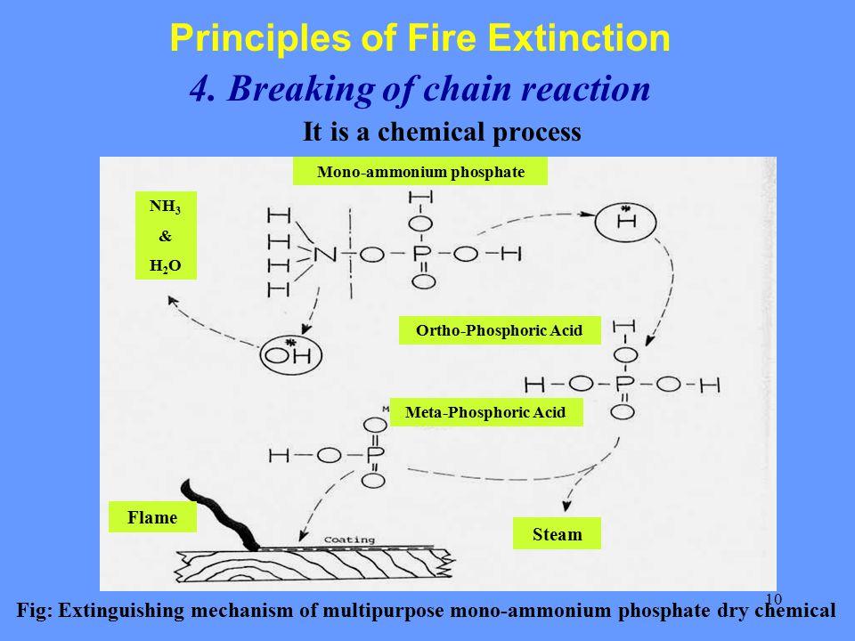 10 Principles of Fire Extinction 4.