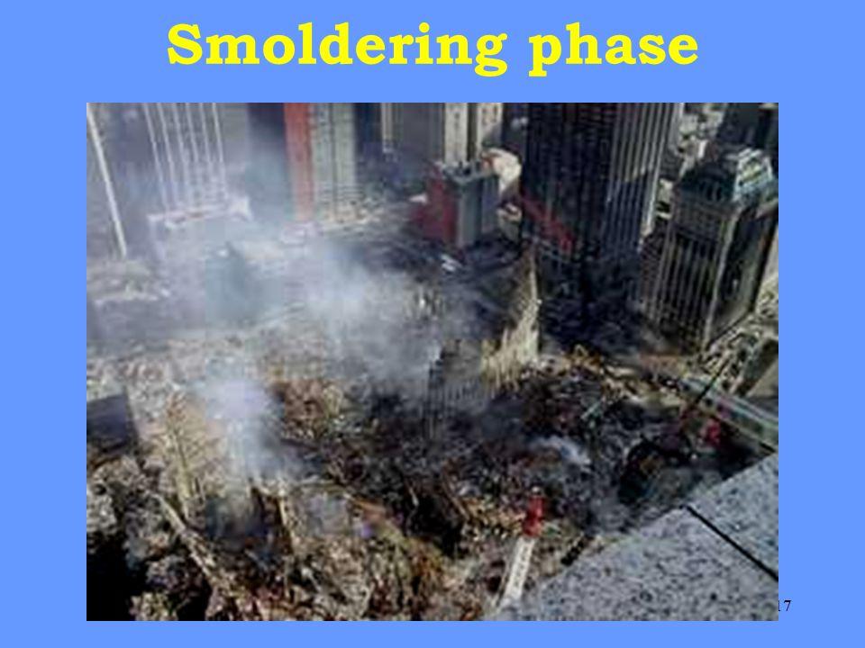 17 Smoldering phase