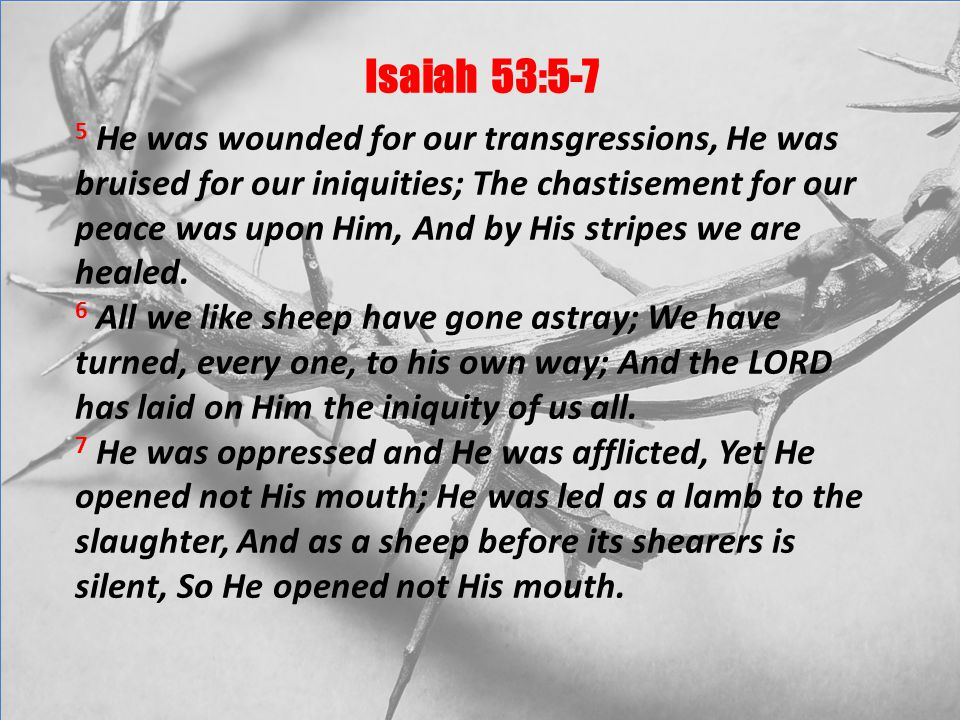 Isaiah 53:5-7 5 He was wounded for our transgressions, He was bruised for our iniquities; The chastisement for our peace was upon Him, And by His stripes we are healed.