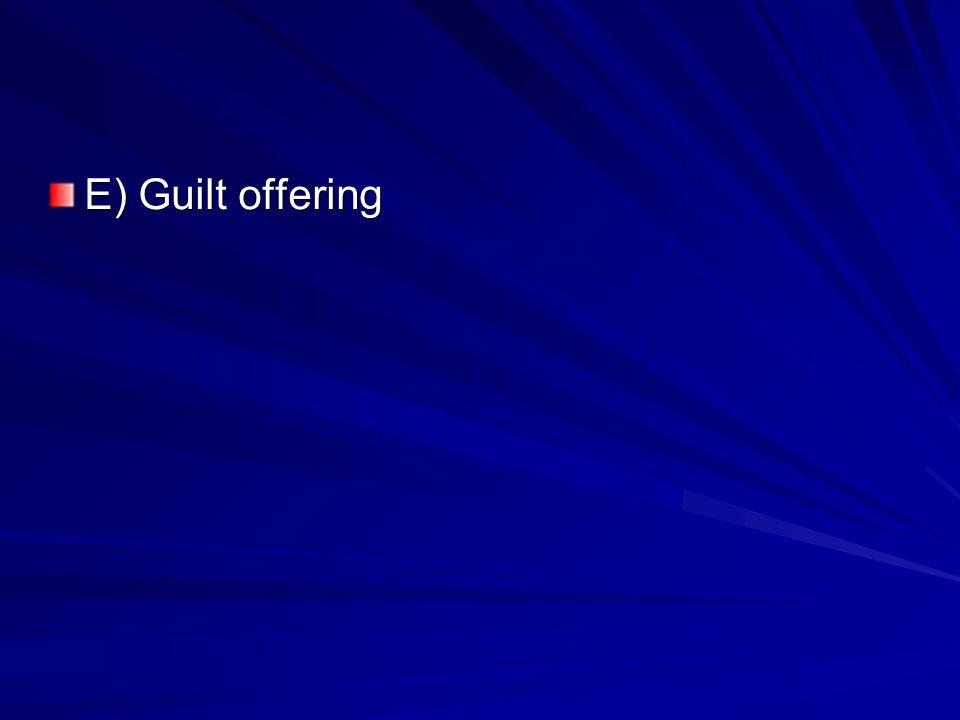 E) Guilt offering
