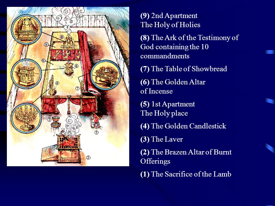 (9) 2nd Apartment The Holy of Holies (8) The Ark of the Testimony of God containing the 10 commandments (7) The Table of Showbread (6) The Golden Alta