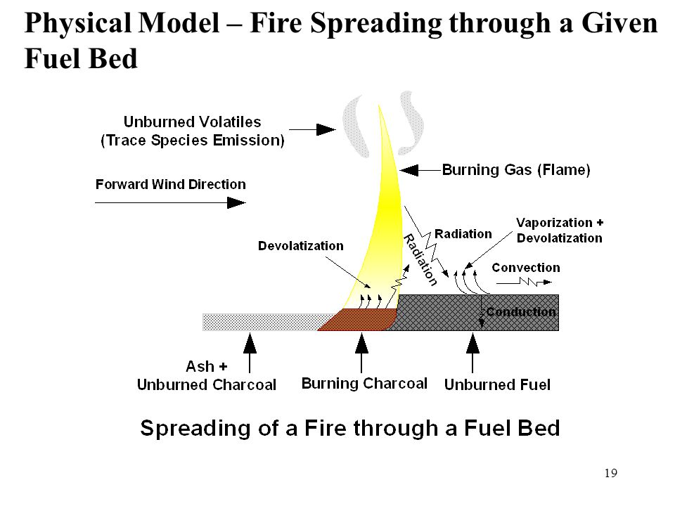 18 Shape of the forward Spreading Fire