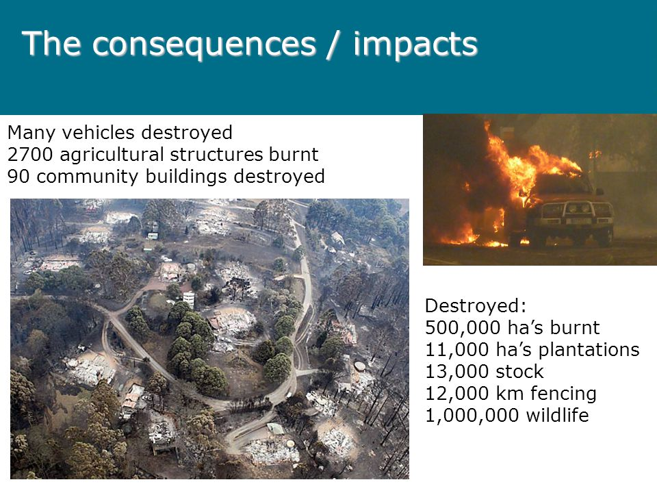 The consequences / impacts Many vehicles destroyed 2700 agricultural structures burnt 90 community buildings destroyed Destroyed: 500,000 ha's burnt 11,000 ha's plantations 13,000 stock 12,000 km fencing 1,000,000 wildlife