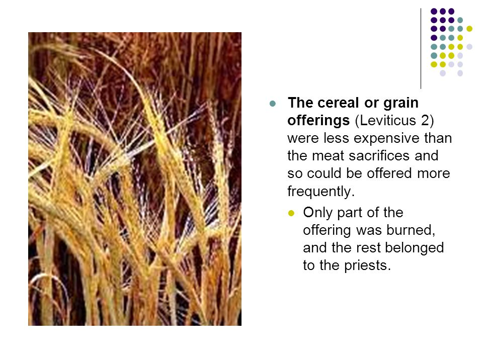 The cereal or grain offerings (Leviticus 2) were less expensive than the meat sacrifices and so could be offered more frequently.