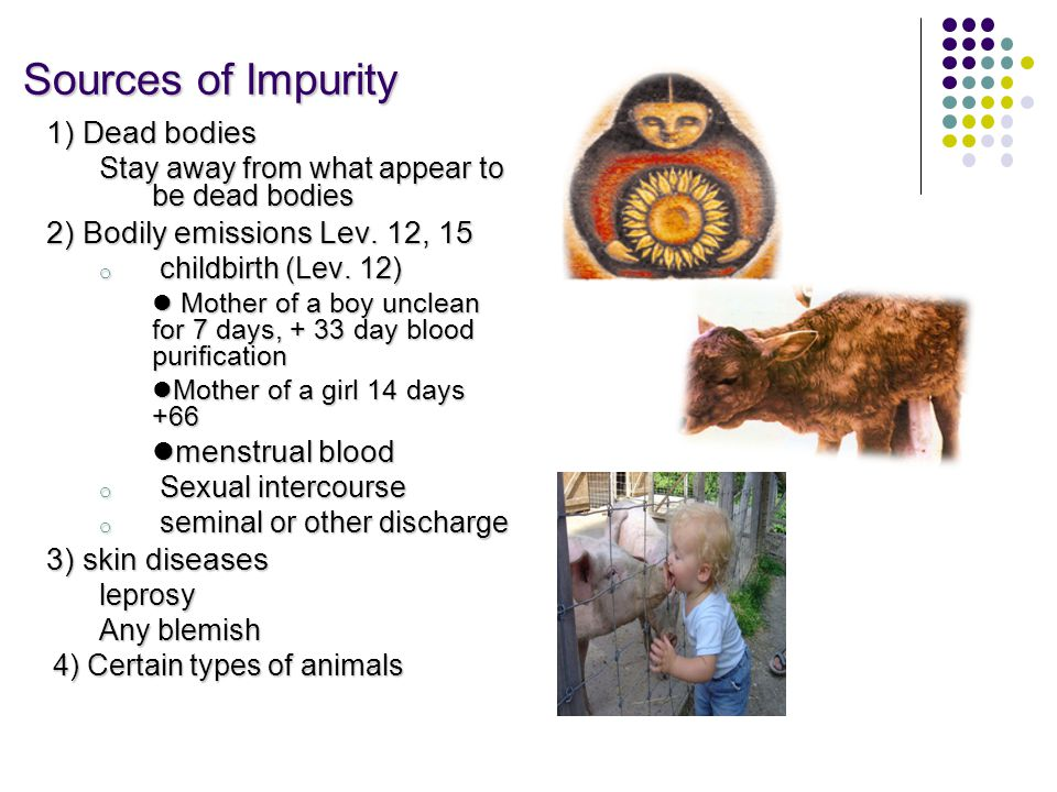 Sources of Impurity Sources of Impurity 1) Dead bodies Stay away from what appear to be dead bodies 2) Bodily emissions Lev.