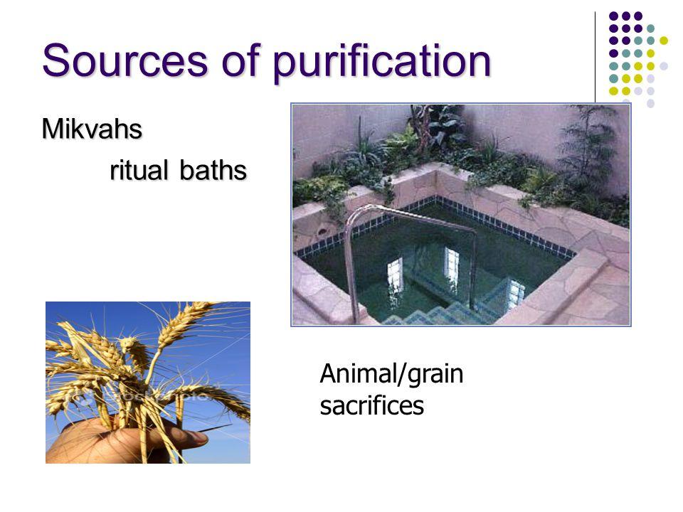 Sources of purification Mikvahs ritual baths Animal/grain sacrifices