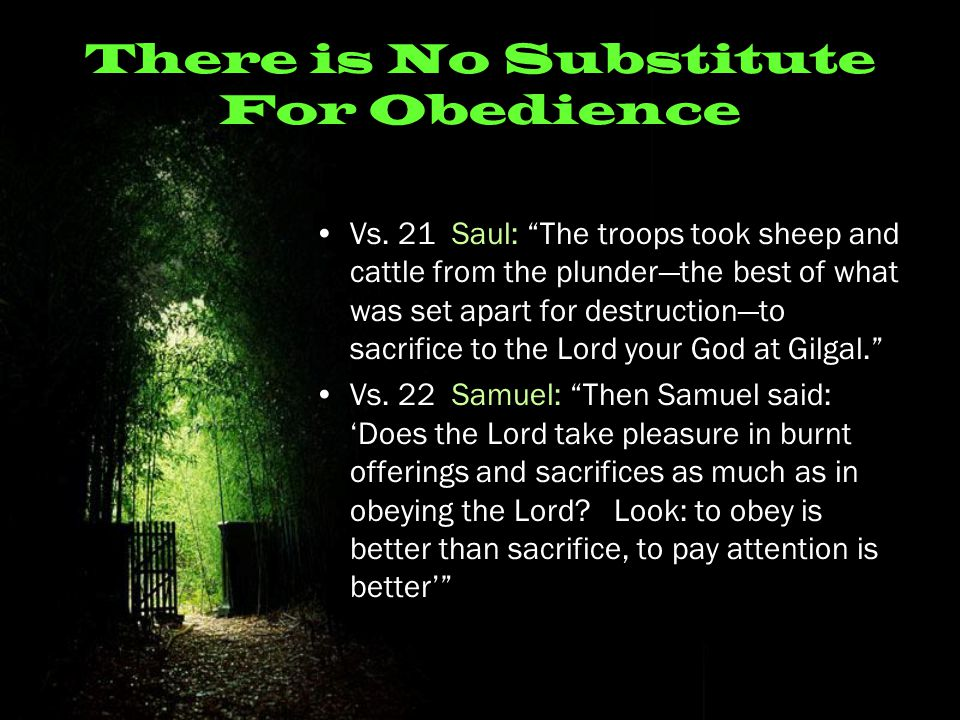 "There is No Substitute For Obedience Vs. 21 Saul: ""The troops took sheep and cattle from the plunder—the best of what was set apart for destruction—to"