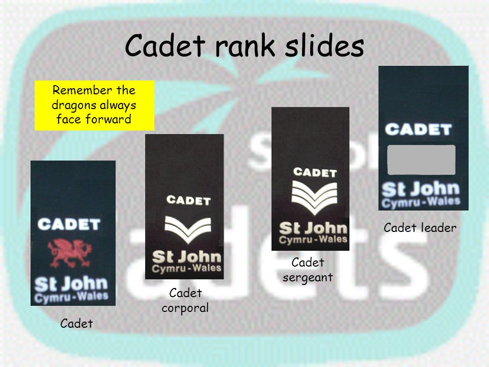 Cadet rank slides Cadet leader Cadet sergeant Cadet corporal Cadet Remember the dragons always face forward