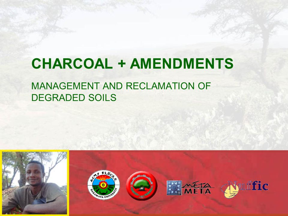 CHARCOAL + AMENDMENTS MANAGEMENT AND RECLAMATION OF DEGRADED SOILS