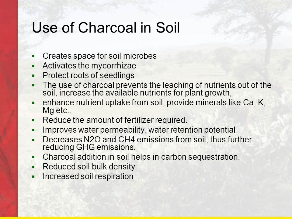 Use of Charcoal in Soil  Creates space for soil microbes  Activates the mycorrhizae  Protect roots of seedlings  The use of charcoal prevents the leaching of nutrients out of the soil, increase the available nutrients for plant growth,  enhance nutrient uptake from soil, provide minerals like Ca, K, Mg etc.,  Reduce the amount of fertilizer required.