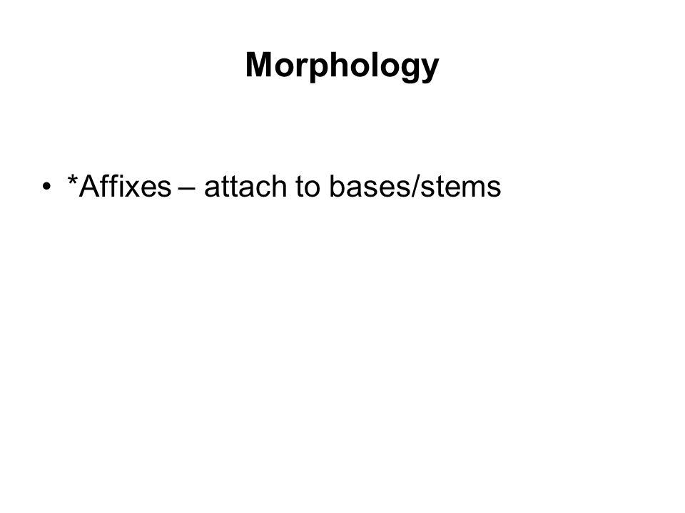 Morphology *Affixes – attach to bases/stems