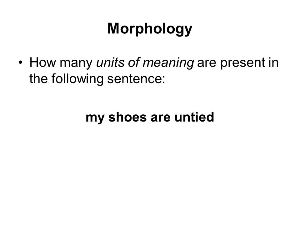 Morphology How many units of meaning are present in the following sentence: my shoes are untied