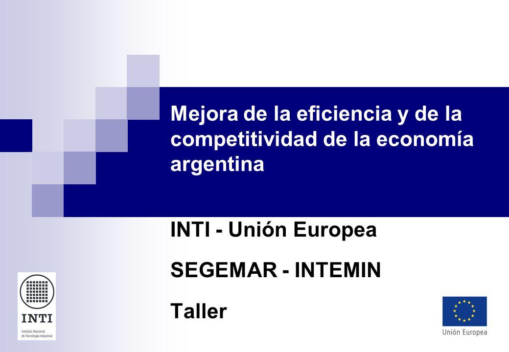 Mejora de la eficiencia y de la competitividad de la economía argentina INTI - Unión Europea SEGEMAR - INTEMIN Taller