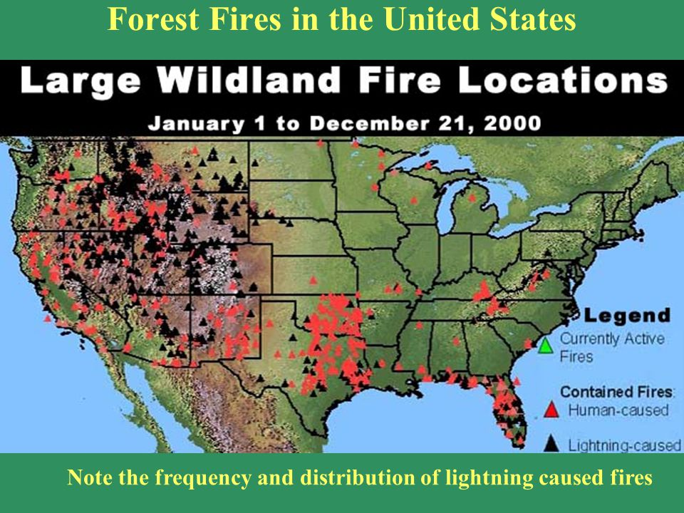 Forest Fires in the United States Note the frequency and distribution of lightning caused fires