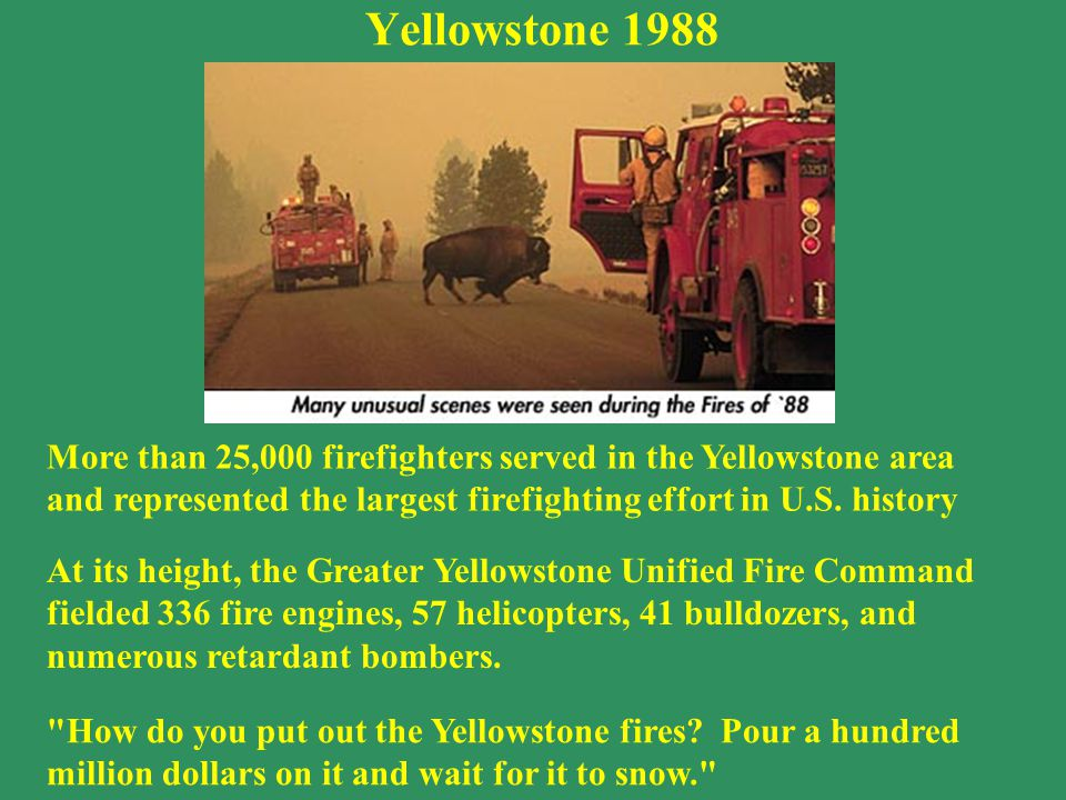 More than 25,000 firefighters served in the Yellowstone area and represented the largest firefighting effort in U.S.