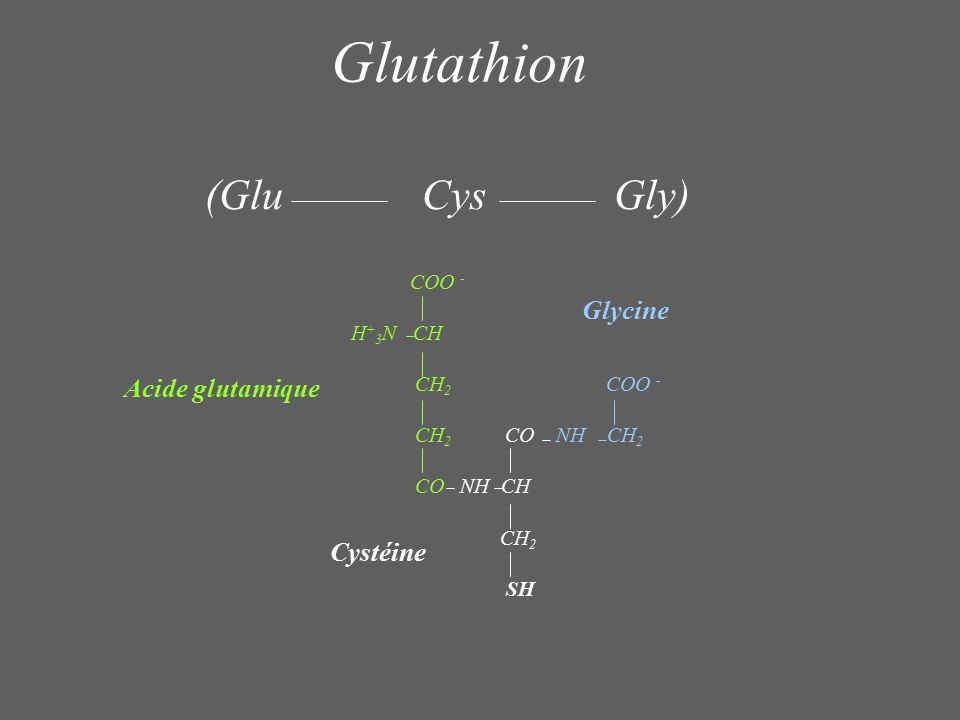 COO - H + 3 N CH CH 2 COO - CH 2 CO NH CH 2 CO NH CH CH 2 SH Acide glutamique Cystéine Glycine (Glu Cys Gly) Glutathion