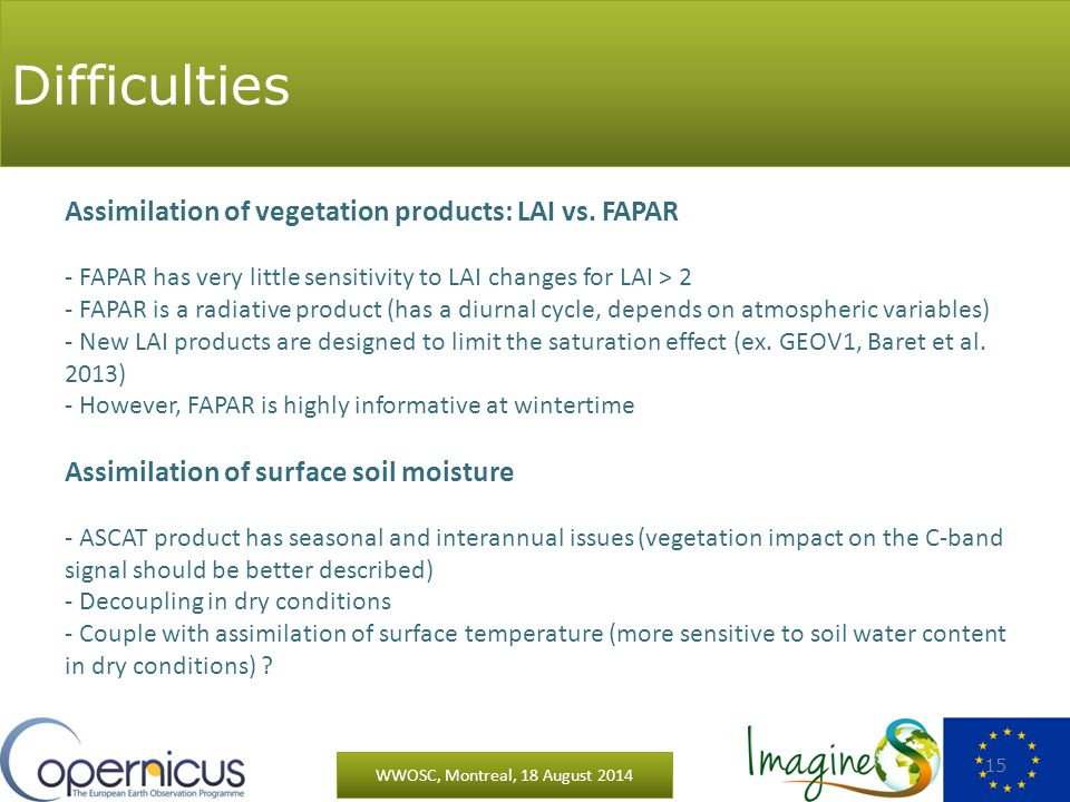 Difficulties WWOSC, Montreal, 18 August 2014 15 Assimilation of vegetation products: LAI vs.