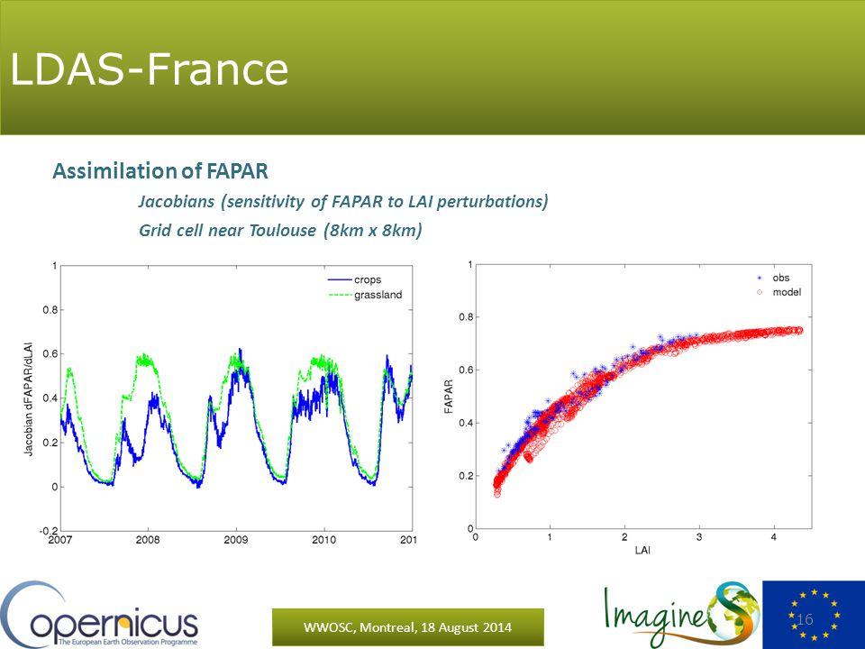 LDAS-France WWOSC, Montreal, 18 August 2014 16 Assimilation of FAPAR Jacobians (sensitivity of FAPAR to LAI perturbations) Grid cell near Toulouse (8km x 8km) LDAS-France