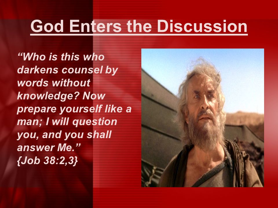 """God Enters the Discussion """"Who is this who darkens counsel by words without knowledge? Now prepare yourself like a man; I will question you, and you s"""