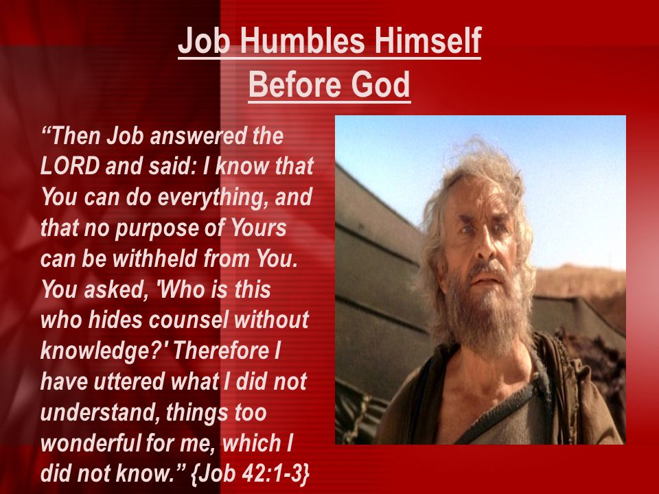 """Job Humbles Himself Before God """"Then Job answered the LORD and said: I know that You can do everything, and that no purpose of Yours can be withheld f"""