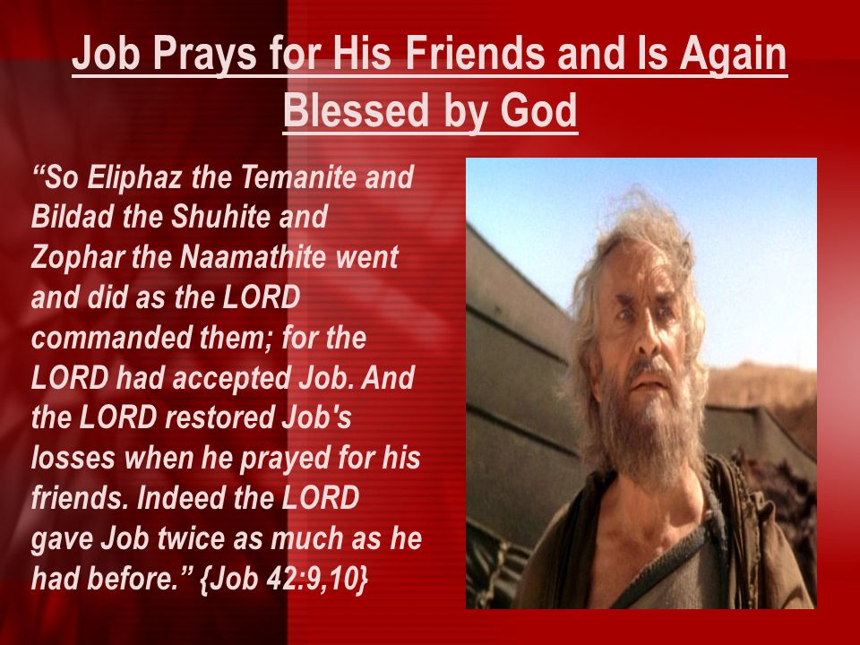 """Job Prays for His Friends and Is Again Blessed by God """"So Eliphaz the Temanite and Bildad the Shuhite and Zophar the Naamathite went and did as the LO"""