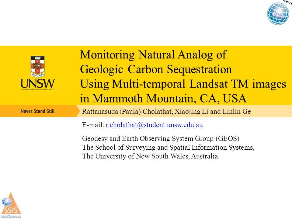 CO2 leakage models: Natural VS GCS Natural leakage model (USGS, 2004) CO 2 storage leakage model ( Damen et al., 2005)