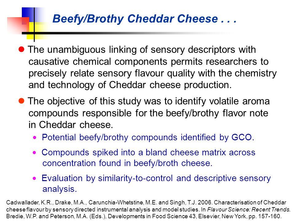 Beefy/Brothy Cheddar Cheese...