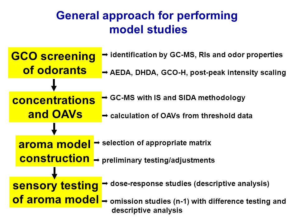 GCO screening of odorants General approach for performing model studies  AEDA, DHDA, GCO-H, post-peak intensity scaling  identification by GC-MS, RIs and odor properties concentrations and OAVs  calculation of OAVs from threshold data  GC-MS with IS and SIDA methodology aroma model construction  preliminary testing/adjustments  selection of appropriate matrix sensory testing of aroma model  omission studies (n-1) with difference testing and descriptive analysis  dose-response studies (descriptive analysis)