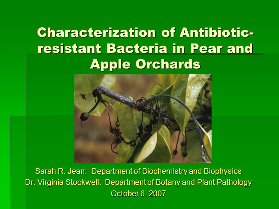 Antibiotic use in the U.S.